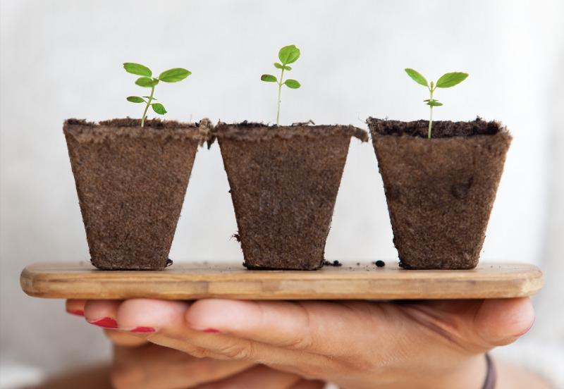 小さく始めて大きく育てる不動産投資