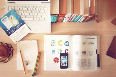 ブログ運営報告:グーグルフレッドアップデートの影響について