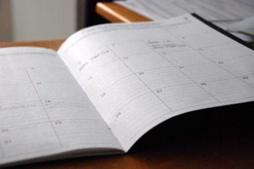 合同会社を格安で設立する手順と所要日数